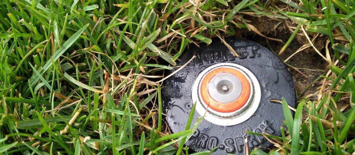 Korpus-ze-zraszaczem-automatycznego-systemu-nawadniania